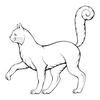Illustration vectorielle dessinés à la main de chat marche noir et blanc isolé sur blanc