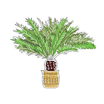 Illustration vectorielle dessinés à la main de palmiers isolés sur le style de tendance de la ligne de croquis de fond blanc