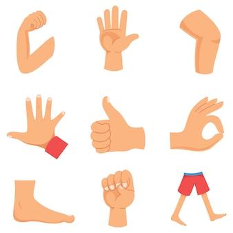 Illustration vectorielle du corps humain