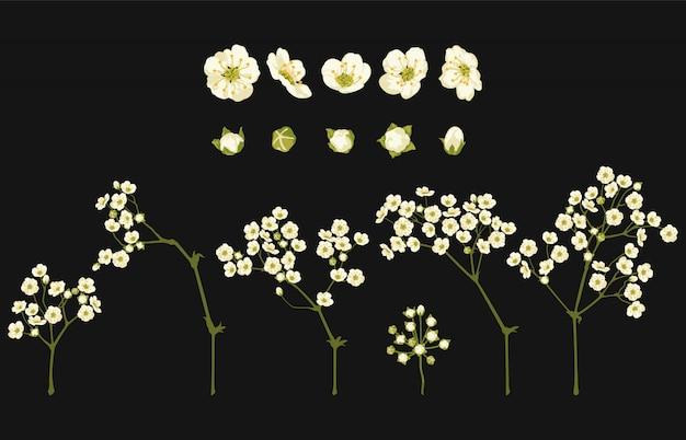 Illustration vectorielle entièrement modifiable d'ensembles de clipart floral.