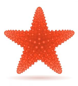 Illustration vectorielle d'étoile de mer