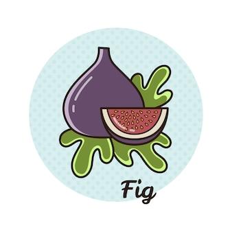 Illustration vectorielle d'une figue.