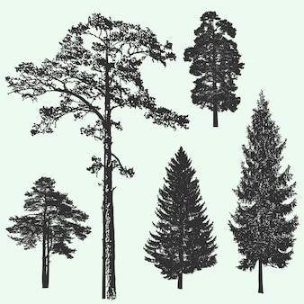 Illustration vectorielle de forêt vintage arbre design silhouette