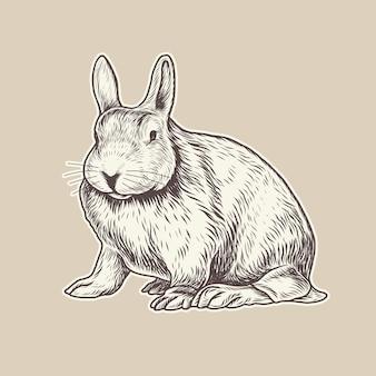 Illustration vectorielle de lapin détaillée dessinée à la main