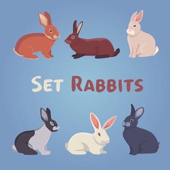 Illustration vectorielle de lapins de dessin animé