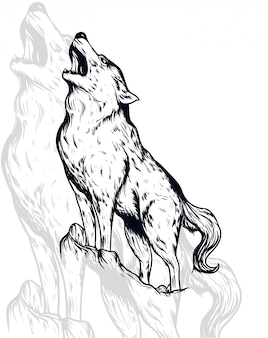 Illustration vectorielle de loup