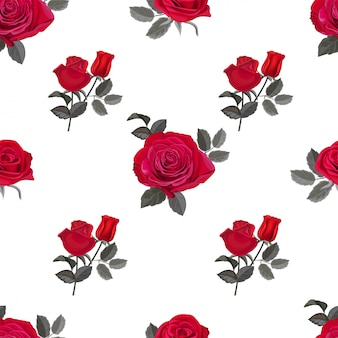 Illustration vectorielle motif rose rouge transparente