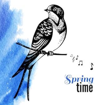 Illustration vectorielle d'oiseau de croquis dessinés à la main. fond aquarelle