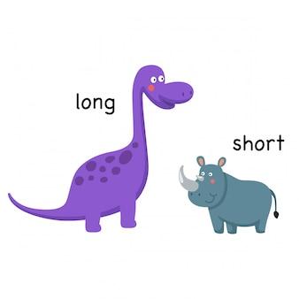 Illustration vectorielle opposée longue et courte
