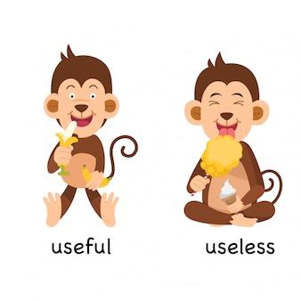 Illustration vectorielle opposée utile et inutile