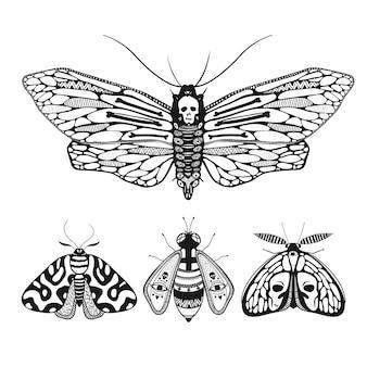 Illustration vectorielle avec des papillons d'ornement mystiques isolés sur la mite de tête de mort blanche