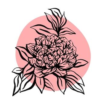 Illustration vectorielle de pivoine fleur dessinés à la main. illustration moderne minimaliste. conception de cartes de vœux, invitations, réseaux sociaux