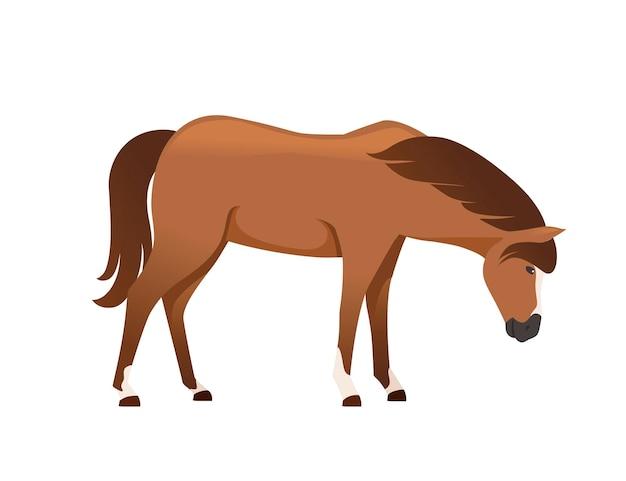 Illustration vectorielle plane de conception de dessin animé animal sauvage ou domestique cheval brun