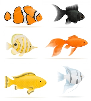 Illustration vectorielle de poissons d'aquarium