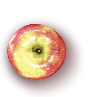 Illustration vectorielle de pomme rouge réaliste
