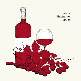 Illustration vectorielle de raisin