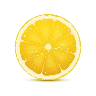 Illustration vectorielle réaliste de tranche de citron