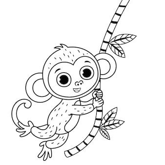 Illustration vectorielle d'un singe mignon avec version décrite