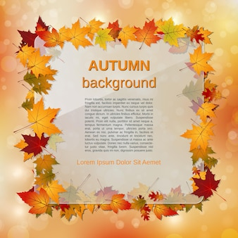 Illustration vectorielle de style automne. arrière-plan flou abstrait avec des feuilles colorées et panneau d'affichage en verre