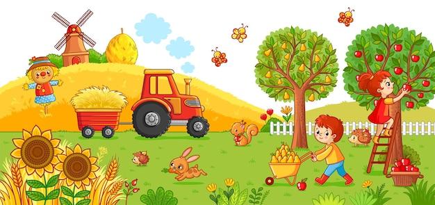 Illustration vectorielle sur un thème agricole le tracteur sur le terrain nettoie le foin