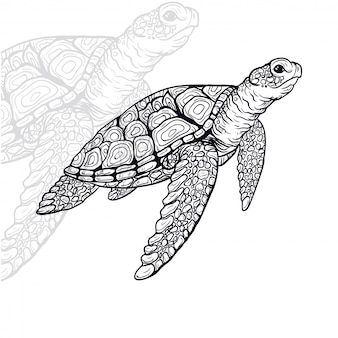 Illustration vectorielle tortue