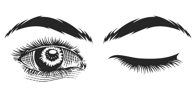 Illustration vintage des yeux humains
