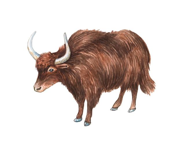Illustration de yak peinte à la main aquarelle