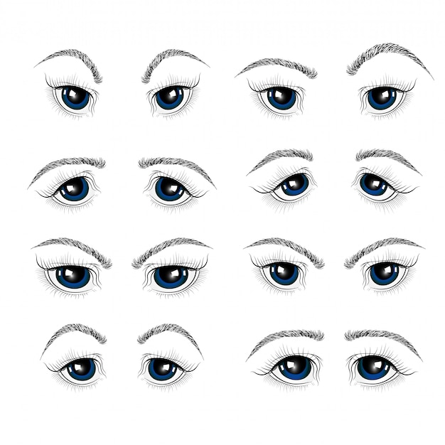 Illustration avec les yeux, les cils et les sourcils de la femme.