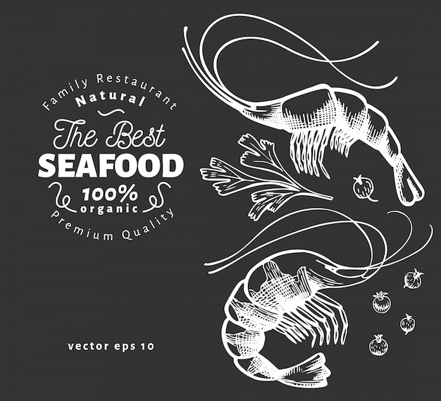 Illustrations de crevettes