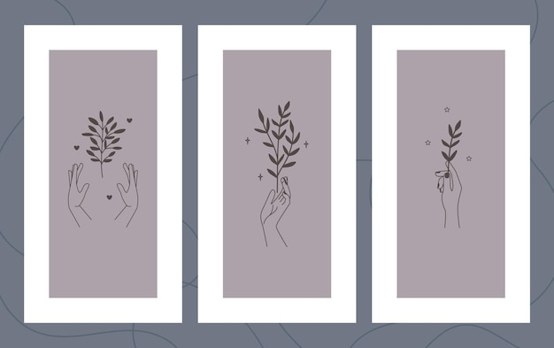 Illustrations florales dessinées à la main sur un ensemble de cadres