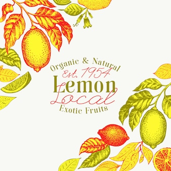 Illustrations de fruits vectoriels dessinés à la main.