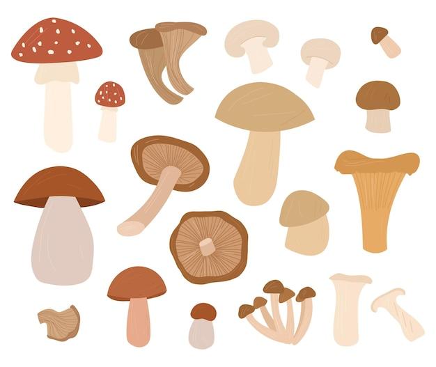Illustrations de jeu de dessins animés dessinés à la main de champignons tous les éléments sont isolés sur fond blanc