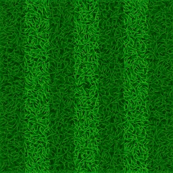Image de champ d'herbe