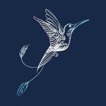 Image vectorielle d'un colibri