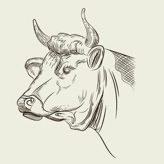 Image vectorielle d'une tête de vache