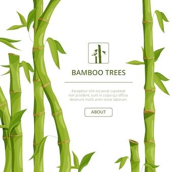 Images de fond écologiques avec décoratif
