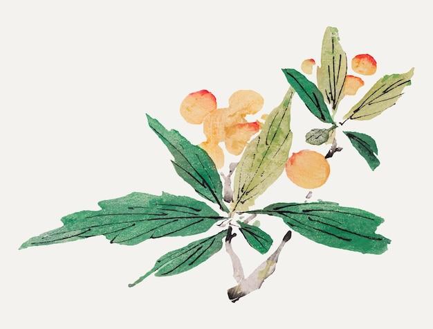 Impression d'art botanique de vecteur de fruits, remixée à partir d'œuvres d'art de hu zhengyan