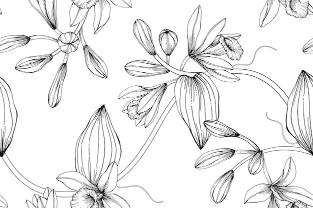 Impression de fond transparente fleur vanille.