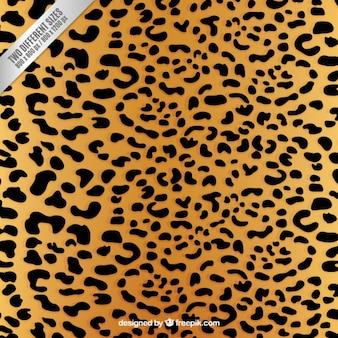 Imprimé léopard fond