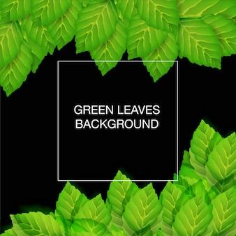 Imprimer le vecteur de fond de feuilles vertes