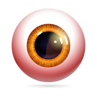 Inflammation de l'œil humain, maladie, protéine rouge.