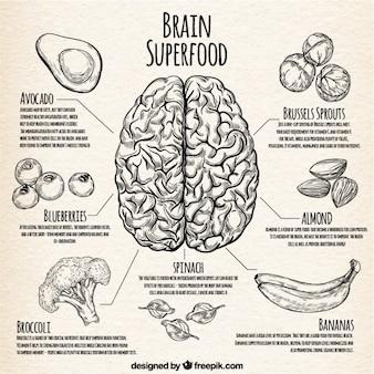 Infographic avec la meilleure nourriture pour le cerveau