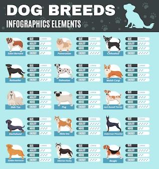Infographie de chiens de race
