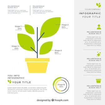 Infographie de l'écosystème moderne avec un design plat