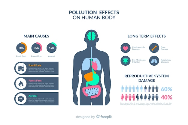 Infographie des effets de la pollution sur le corps humain