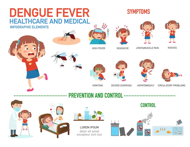 Infographie de la fièvre dengue.
