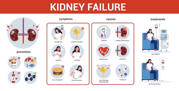 Infographie de l'insuffisance rénale. symptômes, causes, prévention et traitement. idée de traitement médical. urologie, organe humain interne. corps sain.