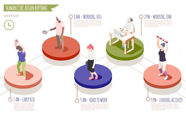 Infographie isométrique des rythmes circadiens humains avec lever tôt le matin frais de route pour travailler le temps de travail et illustration des descriptions d'activités du soir