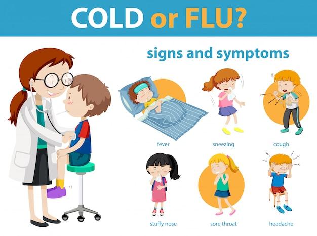 Infographie médicale des symptômes du rhume ou de la grippe