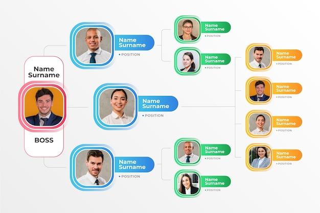 Infographie d'organigramme dégradé avec photo
